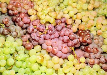Wine grapes in market  after harvest