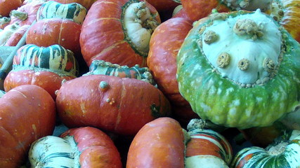 The decorative pumpkins.