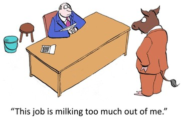 Cow worker