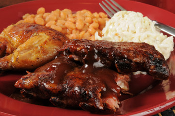 Barbecued ribs and chicken closeup