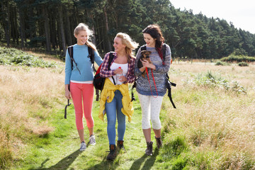 Group Of Teenage Girls Hiking In Countryside