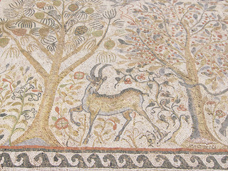 Mosaic Of Heraclea Lyncestis In Bitola, Macedonia Republic