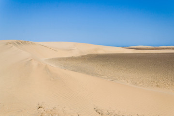Sand dunes of desert of desert