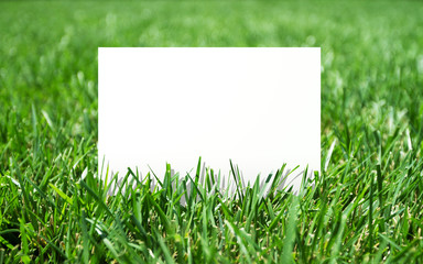 grass and placard