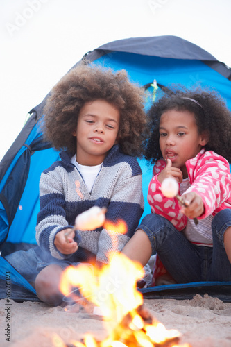 Children Camping On Beach And Toasting Marshmallows