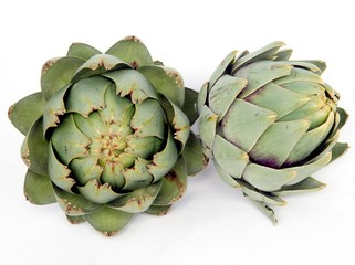 green edible sprouts of artichoke