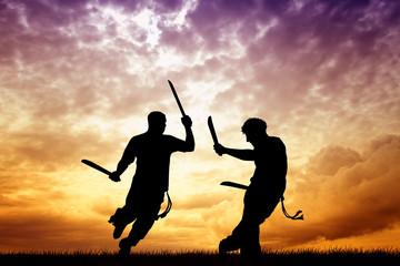 capoeira with swords