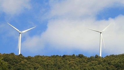 Green forest with wind turbines generating electricity