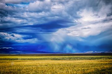 Steppe of Altai.