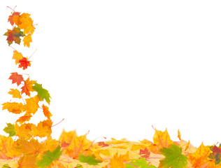 Fliegendes Herbstlaub