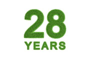 28 Years green grass anniversary numbers