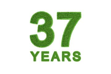 37 Years green grass anniversary numbers