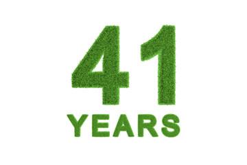 41 Years green grass anniversary numbers