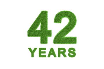 42 Years green grass anniversary numbers