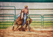 Pole Bender Cowgirl and Quarter Horse