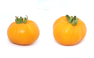 tomate ancienne jaune St Vincent