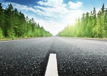 route dans la forêt russe