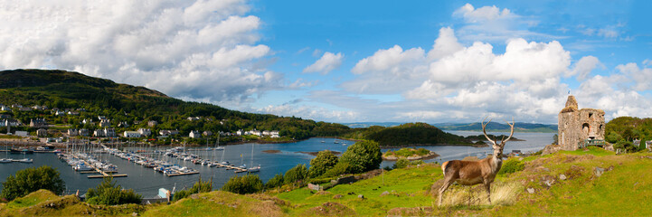 Tarbert Castle and harbor with Red deer in front