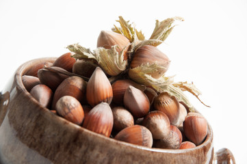Hazelnut on isolated white