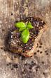 Gegrilltes Steak mit Basilikum, Pfeffer und Salz