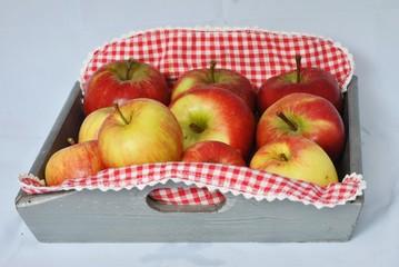 Appels in de herfst voor appeltaart