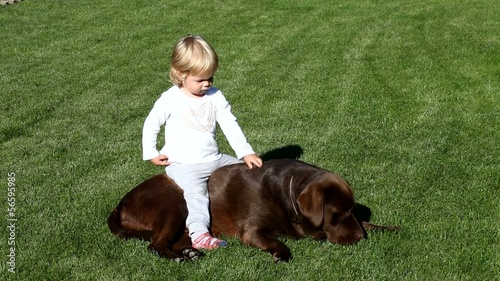 Little girl and Brown Labrador retriever