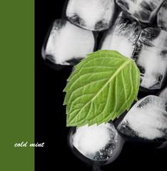 ice cubes, mint leaf on black