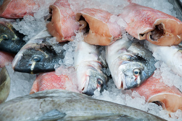 Variety of fresh fish on the market stall