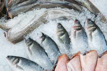 Fresh fish on iced market display, horizontal shot