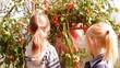 две девочки едят помидоры в огороде