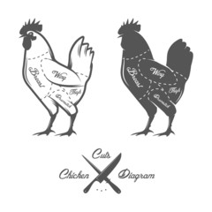 Chicken cuts diagram