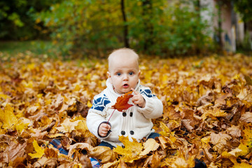 Child in knitted sweater sits in autumn park