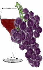 uva da vino rosso