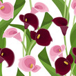 Seamless pattern with pink and purple calla lilies on white.