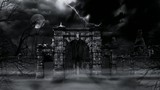 Scary cemetery gate (loop).