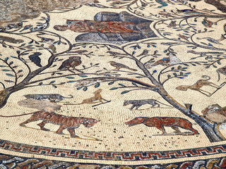 Volubilis Weltkulturerbe - antikes Mosaik