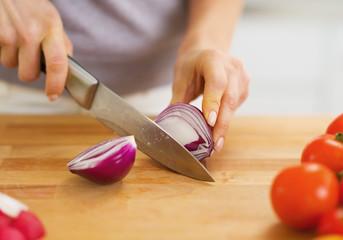 Closeup on woman cutting onion on cutting board