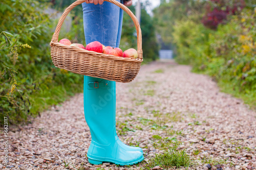 Close-up of hands holding the basket with yellow, red apples and