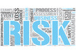 Risk management Word Cloud Concept