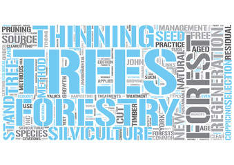 Silviculture Word Cloud Concept
