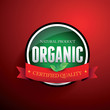 Organic nature product vector