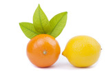Tangerine and lemon on a white background.