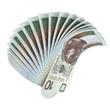 10 PLN fan
