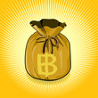 Thai Baht Gold Bag of Money Save for Success