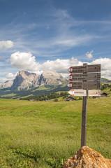 Montagna,Dolomiti,Alpe di Siusi,Alto Adige,Italia