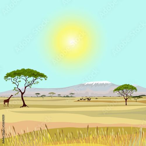 African Mountain idealistic landscape - 56640109
