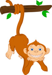 cute monkey hanging cartoon