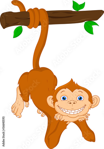 cute monkey hanging cartoon