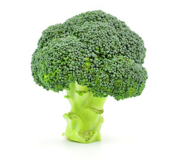 Isolated Broccoli