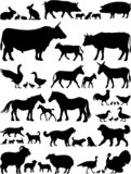 Farm animals vector silhouettes collection